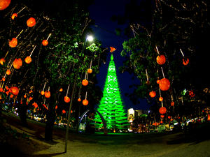 Christmas in Fortaleza